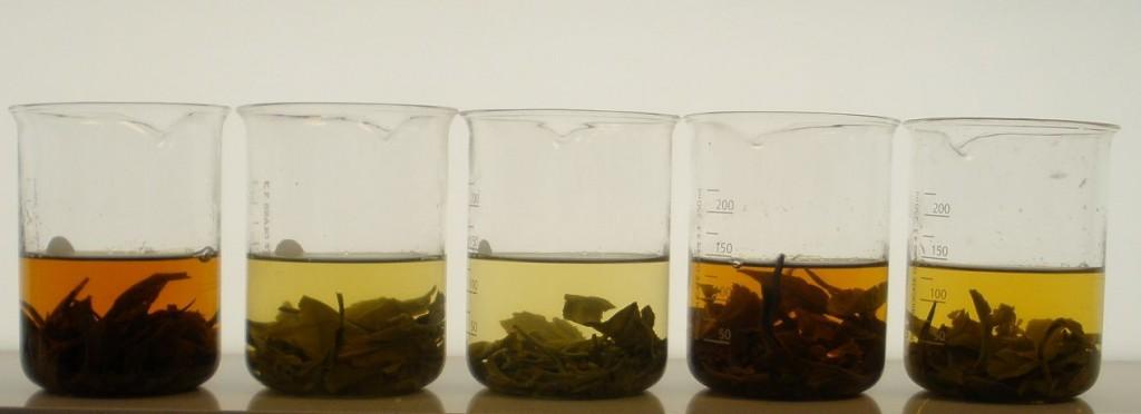 Speciality Tea Range