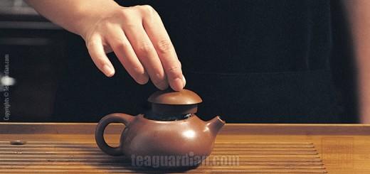 Gongfu tea making lesson 1