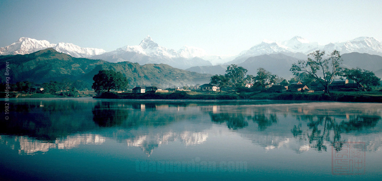 Anapurna, the region of the Himalayan orthodox black tea we revi