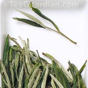 Tianshan Yinya, green tea