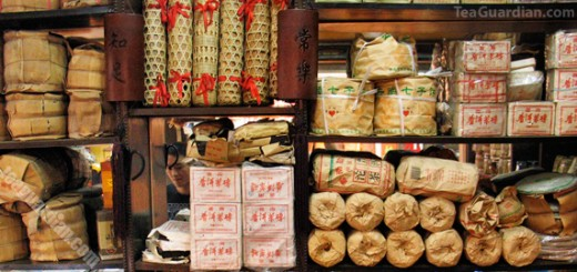 Various compressed pu'er products in a small shop