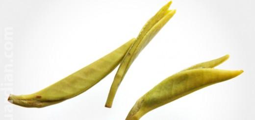 Infused leaves of Shihua green tea