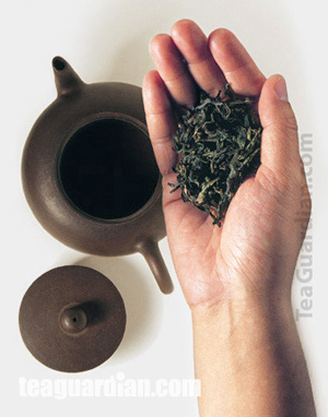Putting tealeaves into a Yixing teapot