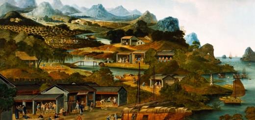 Wuyi Tea Buying