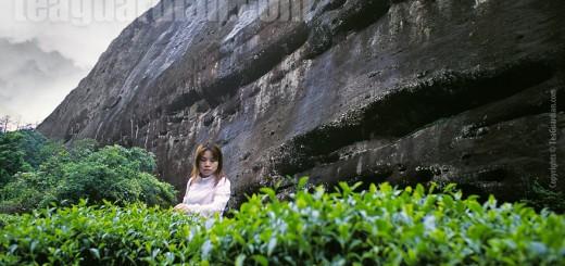 Xiao Fan under the rock