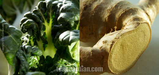 Bok Choi and Ginger: What does Traditional Chinese Medicine has