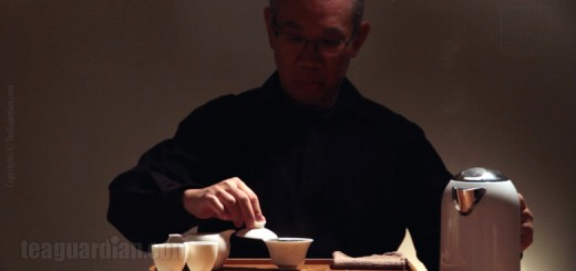 Gongfu Infusion Chapter 2
