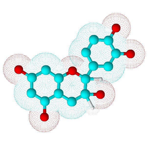 A catechin molecule