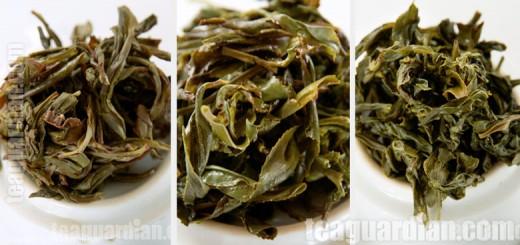 Shiguping wulong as compared to Milan Xiang Dancong and Wenshan Paochong