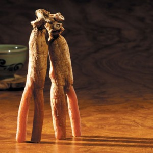 Korean red ginseng roots