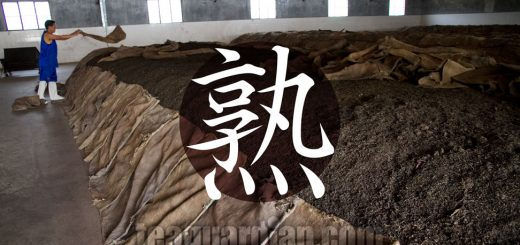 Worker covering a pile of pu'er tea for post-fermentation proces